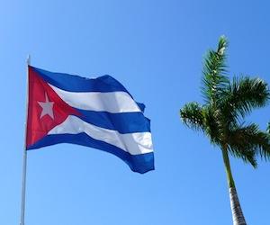 20110225003034-bandera-cubana-y-palma-real.jpg