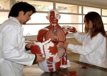 20120401014138-estudiantes-medicina.jpeg